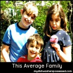 This Average Family